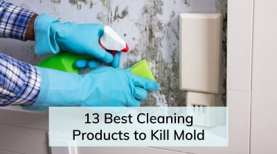 Best Cleaning Products to Kill Mold